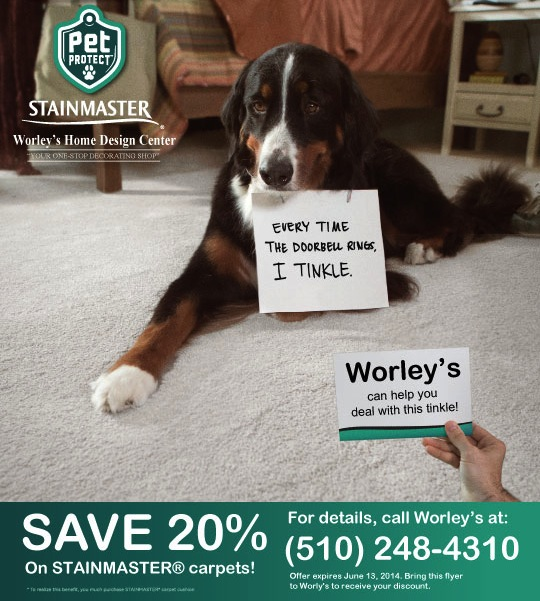 worleys-petprotect-stainmaster